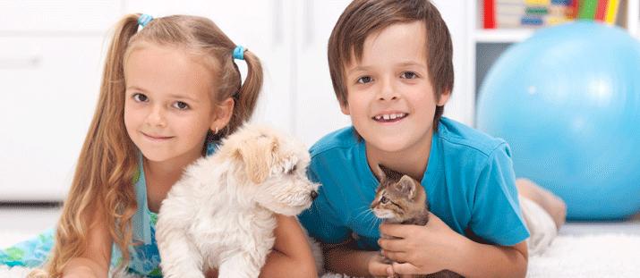Hundägare med pälsdjursallergi – Hur fungerar det?