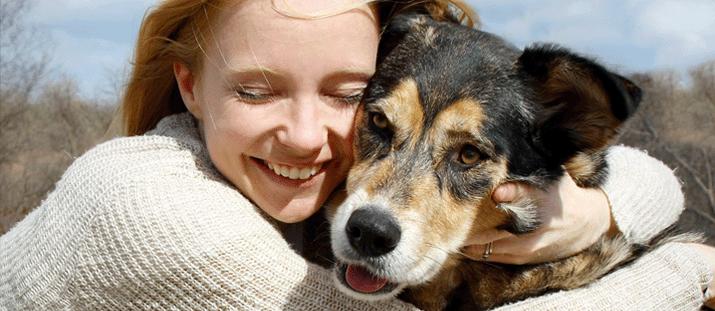 Hundens allergener är bovarna i dramat